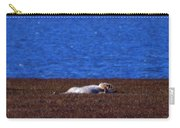 Polar Bear Rolling In Tundra Grass Carry-all Pouch