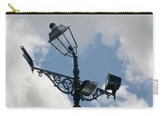 Polite Lamppost Carry-all Pouch
