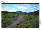 Polychrome Pass Trail, Denali Carry-all Pouch