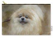 Pom Pom Smiling Carry-all Pouch