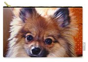 Pomeranian Contemplation Carry-all Pouch