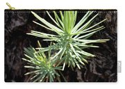 Ponderosa Pine 3 Carry-all Pouch