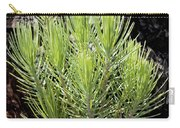 Ponderosa Pine 5 Carry-all Pouch