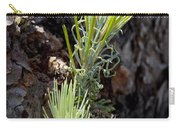 Ponderosa Pine 8 Carry-all Pouch