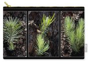 Ponderosa Pine Wide Carry-all Pouch