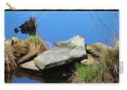 Pondside Stone Carry-all Pouch