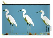 Pop Egrets Carry-all Pouch