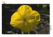Poppies 2 Carry-all Pouch
