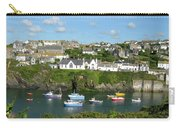 Port Isaac 2 Carry-all Pouch