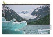 Porter Glacier Alaska  Carry-all Pouch