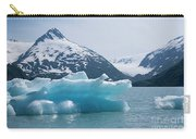 Porter Glacier Alaska II Carry-all Pouch