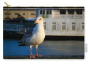 Portrait Of A Seagull Carry-all Pouch