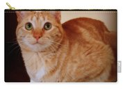 Portrait Of A Tabby Carry-all Pouch