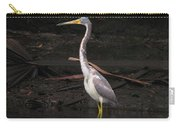 Portrait Of A Tri-colored Heron Carry-all Pouch