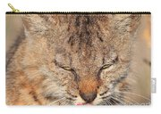 Portrait Of A Young Bob Cat 02 Carry-all Pouch