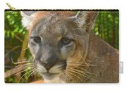 Portrait Of A Young Florida Panther Carry-all Pouch