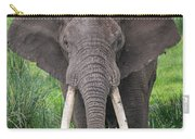 Portrait Of African Elephant Loxodonta Carry-all Pouch