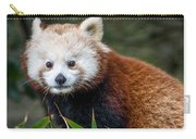 Portrait Of Cini The Red Panda Carry-all Pouch