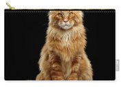 Portrait Of Ginger Maine Coon Cat Isolated On Black Background Carry-all Pouch by Sergey Taran