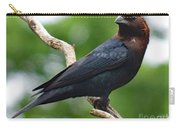 Posing Brown-headed Cowbird Carry-all Pouch