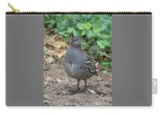 Posing Female Quail Carry-all Pouch