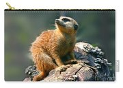 Posing Meerkat Carry-all Pouch