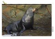 Posing Sea Lion Carry-all Pouch