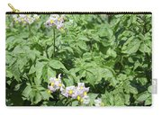 Potato Flower Agriculture Spring Scene Carry-all Pouch