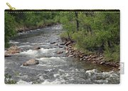 Poudre River 3 Carry-all Pouch