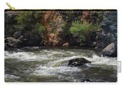 Poudre River 2 Carry-all Pouch