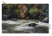 Poudre River Carry-all Pouch