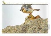 Prairie Falcon Carry-all Pouch