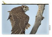 Prairie Falcon Stretching Carry-all Pouch