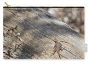 Prairie Lizard _ 1a Carry-all Pouch