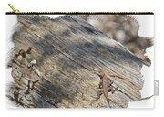 Prairie Lizard _ 1b Carry-all Pouch