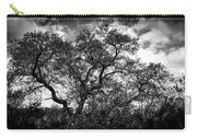 Prairie Oak Carry-all Pouch
