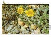 Prairie Rock Garden Carry-all Pouch