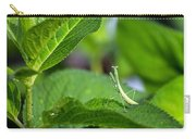 Praying Mantis-2 Carry-all Pouch