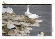 Precarious Nesting Bempton Gannets Carry-all Pouch