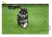 Precious Alusky Puppy Dog Running In A Yard Carry-all Pouch
