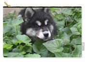 Precious Fluffy Alusky Puppy Dog In Green Foliage Carry-all Pouch