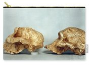 Prehistoric Skulls Carry-all Pouch