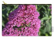 Pretty Blooming Pink Phlox Flowers In A Garden Carry-all Pouch