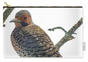 Pretty Boy - Northern Flicker Carry-all Pouch