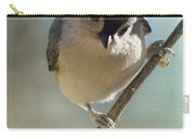 Pretty Eyes Carry-all Pouch
