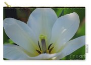 Pretty Perfect White Tulip Flower Blossom In The Spring Carry-all Pouch