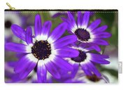 Pretty Purple Daisies Carry-all Pouch