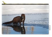 Pretty Reflecting Mink Carry-all Pouch