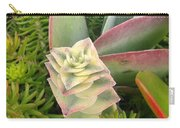 Pretty Succulents Carry-all Pouch