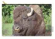 Prim And Proper Bison Carry-all Pouch